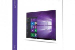 MS WINDOWS 10 PRO KUTU 32/64 ENG USB FQC-10071